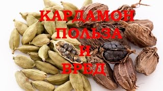 видео Использование семян кардамона для похудения