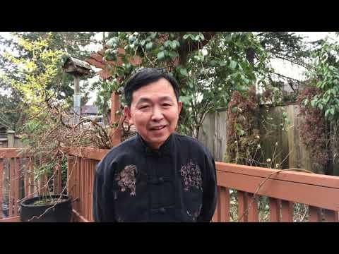 黄河边播报:突发:加拿大驻华大使被炒,他的麻烦才刚开始,有个华人丈母娘真不容易啊!