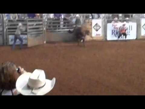 Skat Kat son from Rockin Rafter P Ranch