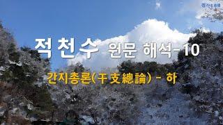 [적천수 원문 해석-10] 9.간지총론-하