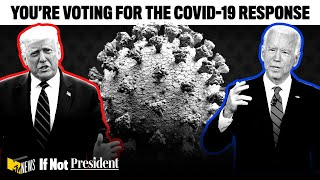 You're Voting for the COVID-19 Response   If Not President