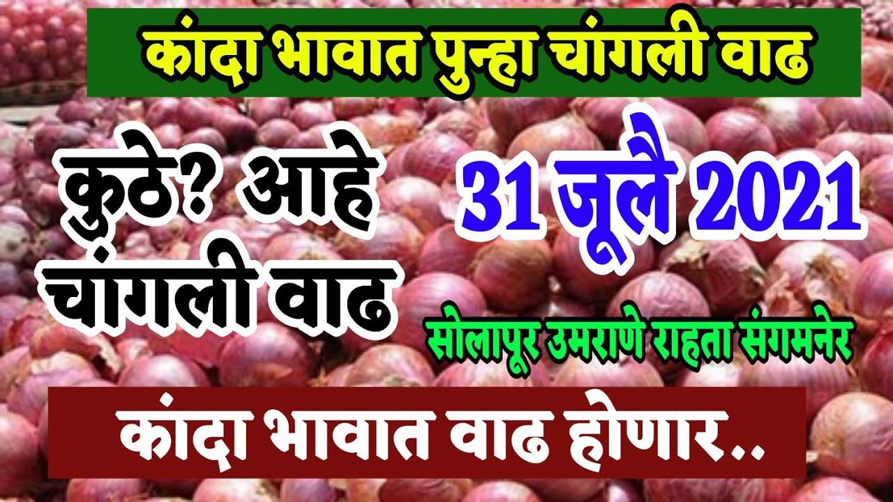 कांदा बाजार भाव वाढले 31 जूलै/महाराष्ट्राच्या बऱ्याच ठिकाणी/onion market today live/Kanda bhav today