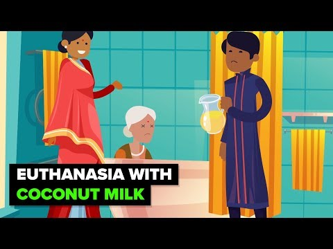 India - Where Coconut Milk is a Murder...