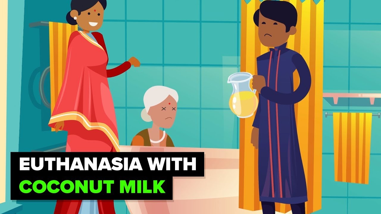 India - Where Coconut Milk is a Murder Weapon