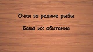 Русская Рыбалка 3.99 Очки за редкие рыбы.