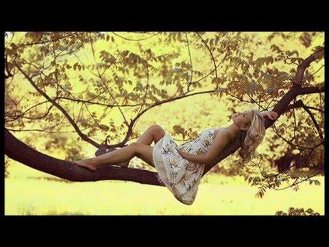 Lady D'Arbanville - Cat Stevens mp3