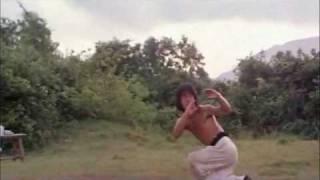 Jackie Chan - Drunken Master - 8 Drunk Gods