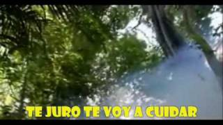 Gaia - Belinda [ oficial vídeo ] Carpe Diem
