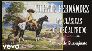 Vicente Fernández - Camino de Guanajuato - Cover Audio