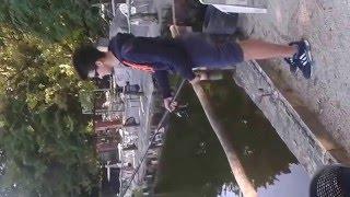 pesca alla carpa - lago nievole