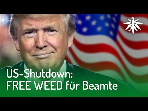 US-Shutdown: FREE WEED für Beamte   DHV-News #193