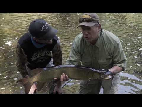 American Rivers Tour - Colin Ambrose on the Chippewa Flowage
