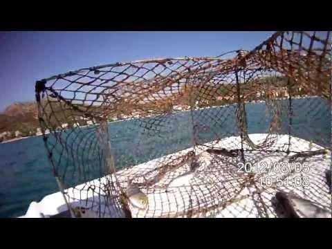 Ribolov sa sklopivom vršom - Fishing with foldable fish trap