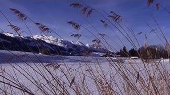 Toggenburg Tourismus - Winter