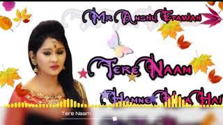 Tere Naam 💞Hamne Kiya Hai💞Tere Ishq Ne Sathiya 💞 New Tik Tok Viral Dj Remix Song💞 Dj Collection