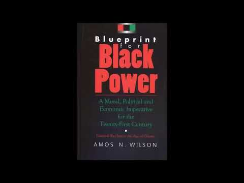 Mhenga Amos N. Wilson: The Psychology of Co-operative Economics