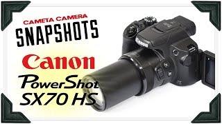 Cameta Camera SNAPSHOTS - Canon SX70 HS 65x Zoom Digital Camera