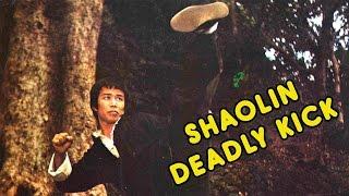Video Wu Tang Collection -  Shaolin Deadly Kick download MP3, 3GP, MP4, WEBM, AVI, FLV November 2017
