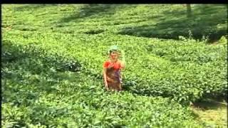 06 Pahariya Moan HO SONG ADIVASI.MPG