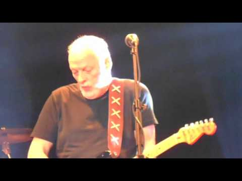 In any tongue, David Gilmour solo guitar...