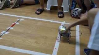 Занятия робототехникой. Шагающий робот