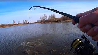ТРОФЕЙНАЯ ЩУКА НА ДЖИГ Рыбалка на спиннинг Рыбалка на Джиг с берега