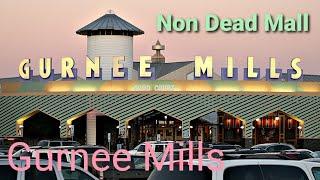 Non Dead Mall: Gurnee Mills - Gurnee, Il
