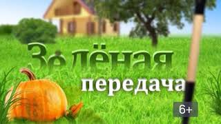 2018 04 03 Зелёная передача