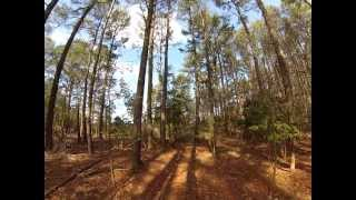 Gambar cover Rabbit Hunt with Beagles in Cambridge, Maryland - GoPro Watch in 720p HD