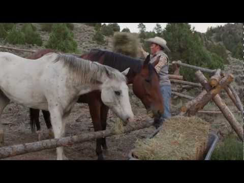 a-bar-a-ranch-expeditions