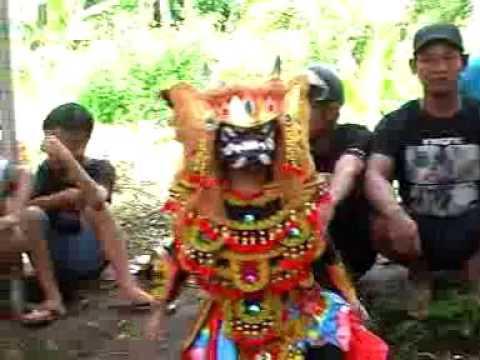 JARANAN WAHYU RUKUN WARGO BUDOYO Seri 1 Selorejo Kaligondo Kecamatan Genteng Kabupaten Banyuwangi