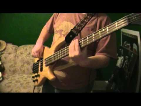 Silversun Pickups - Well Thought Out Twinkles - Bass Cover