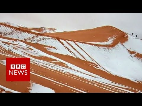 Snow falls in the Sahara desert - BBC News