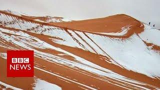 Snow Falls In The Sahara Desert - BBC News