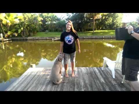 Paws for Veterans ice bucket challenge