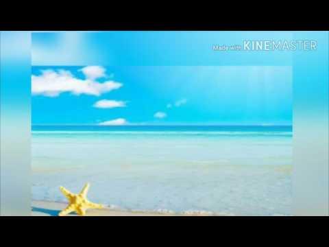 lirik lagu Steven And The Coconut treez - lagu santai (lyrics)