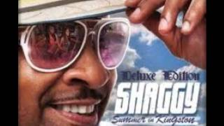 Shaggy  [Summer In Kingston (july 2011)]-The Only One ft