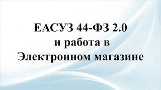 Работа в системе ЕАСУЗ 2.0 и электронном магазине