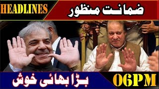Granted Bail | News Headlines | 06:00 PM | 14 Feb 2019 | Lahore Rang