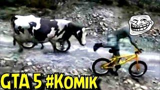 Gta 5 Komik Montaj | Kurbanlık Inek Adam öldürdü