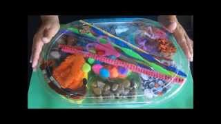 How to Make a Cool Pet Rock Party Kit!