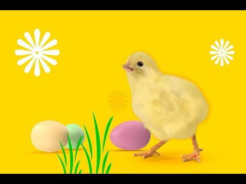 How To Create Amazing Easter Art In Adobe Photoshop CC With PixelSquid