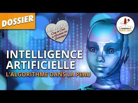 TOUT COMPRENDRE À L'IA - Dossier #33 - L'Esprit Sorcier