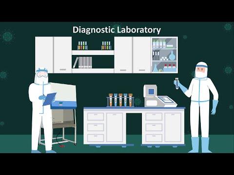 COVID-19 LIMS Software for Coronavirus Diagnostic Testing Labs