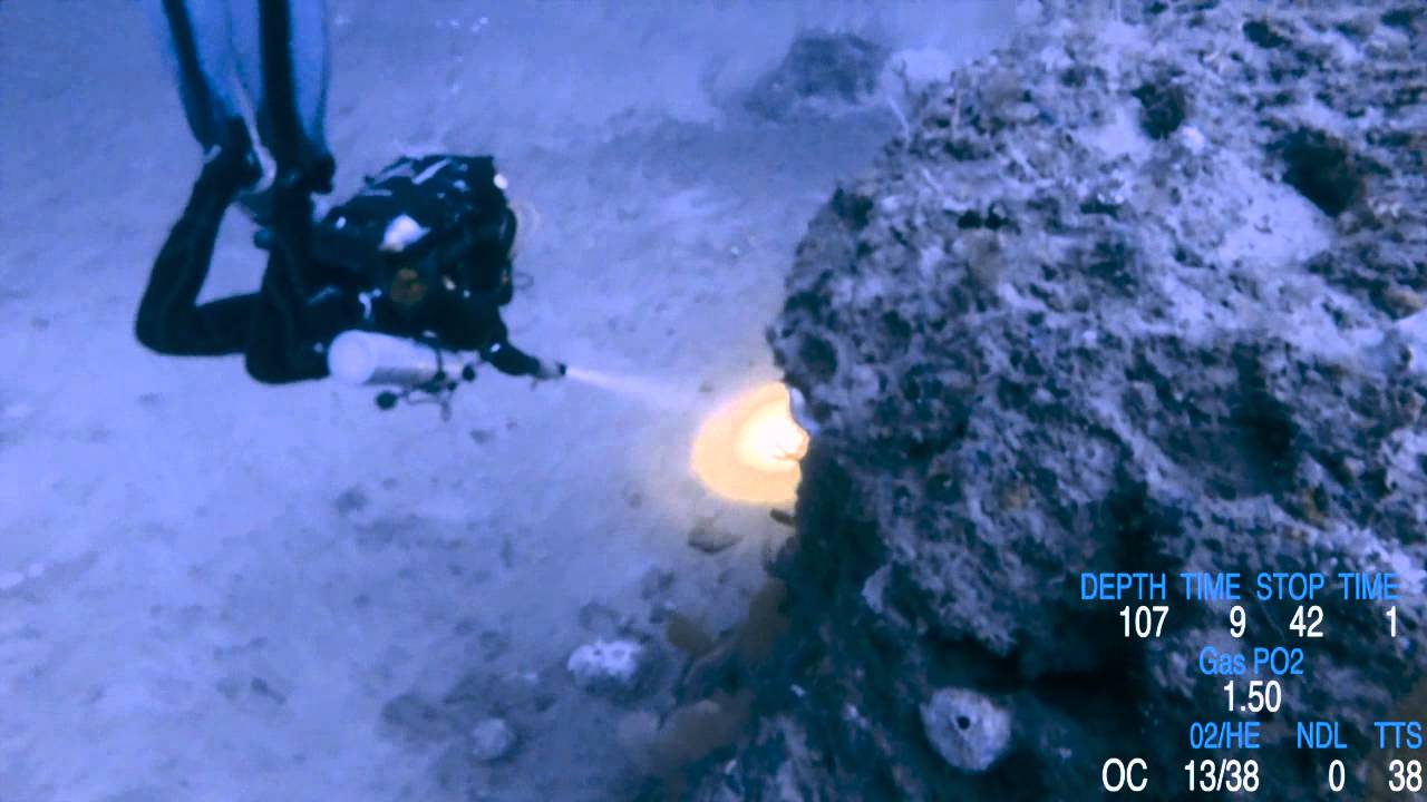 Dive Video Data Overlay | ScubaBoard
