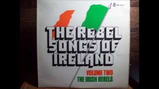 Sean South - The Irish Rebels