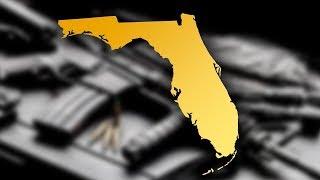 Florida Republicans Stay Silent On Gun Control, Declare Porn A Threat To Public Health