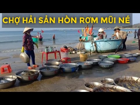 Đi biển mũi né hòn rơm 2 hải sản ốc mực rẻ vô cùng dạo 1 vòng chợ bán hải sản mũi né
