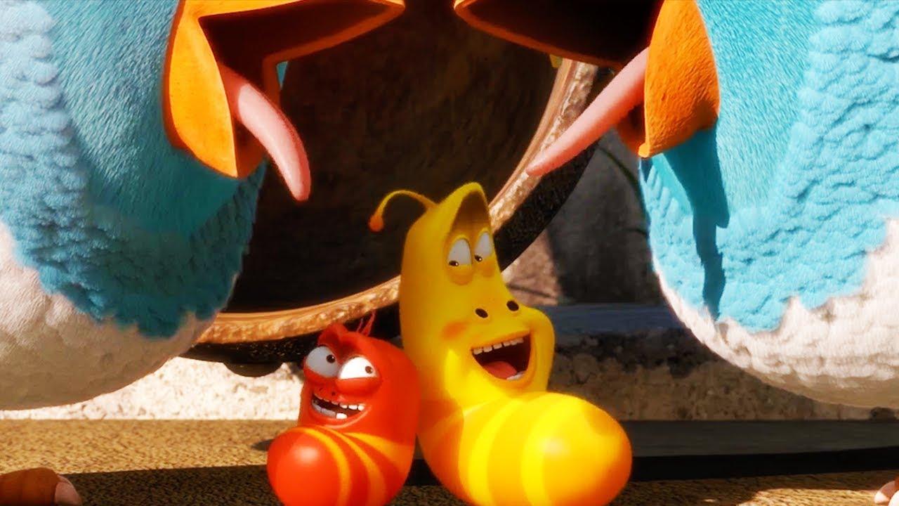 LARVA - CATCH ME IF YOU CAN | Cartoon Movie | Cartoons For Children | Larva Cartoon | LARVA Official