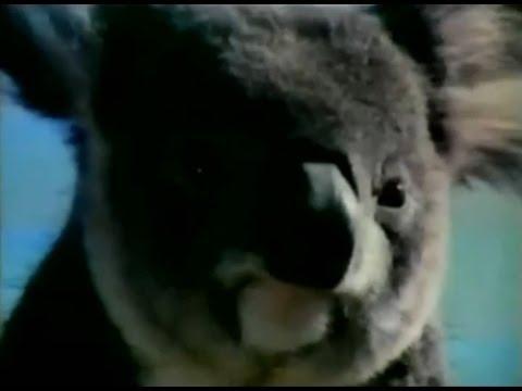 Qantas Airlines Koala Mascot Commercial (1972) - YouTube